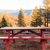 Picnic Table Near the Forest stock photo © gregorydean