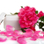 open jar with the cosmetic cream and rose petals stock photo © gsermek