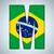 Brazilië · vlag · alfabet · brieven · woorden · vector - stockfoto © gubh83