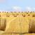 straw bales stock photo © guffoto