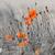 klaprozen · witte · voorjaar · ontwerp · zomer · groene - stockfoto © guffoto