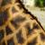キリン · 皮膚 · テクスチャ · 純正 · 革 · 光 - ストックフォト © guffoto