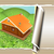 background of wooden travel house or a hotel with torn paper stock photo © guru3d