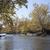 nehir · büyük · dere · orman · yeşil · çağlayan - stok fotoğraf © hanusst