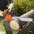 artesão · madeira · luz · ferramentas - foto stock © hanusst