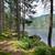 dél · Saskatchewan · folyó · tó · gyönyörű · kilátás - stock fotó © hanusst