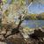 nagyszerű · park · Virginia · USA · folyó · felhők - stock fotó © hanusst
