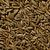 geheel · komijn · zaden · geïsoleerd · witte · Spice - stockfoto © hanusst
