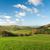 large pastureland in wales stock photo © hanusst