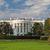 white house stock photo © hanusst