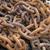 rozsdás · lánc · csoport · öreg · mintázott · vasaló - stock fotó © haraldmuc