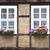 histórico · edificio · flores · Windows · entrada · de · coches · casa - foto stock © haraldmuc