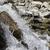 waterval · Italië · brug · architectuur · vallen · stream - stockfoto © haraldmuc