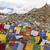 oração · bandeiras · tibete · ver · colorido · bandeira - foto stock © haraldmuc