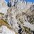 yürüyüş · alpler · dağlar · taş · sonbahar · tatil - stok fotoğraf © haraldmuc