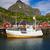 赤 · 住宅 · ボート · ノルウェー · 山 · 雲 - ストックフォト © harlekino