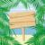 pálmafák · keret · tengerpart · pálmafa · levelek · tenger - stock fotó © hayaship