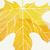 葉 · 秋 · 森林 · eps · 10 · ベクトル - ストックフォト © helenstock