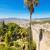 palmier · malaga · château · Espagne · maison - photo stock © HERRAEZ