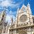 détail · façade · cathédrale · Espagne · ciel · bâtiment - photo stock © HERRAEZ
