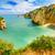 美しい · 崖 · ポルトガル · 海岸 · 風景 · ビーチ - ストックフォト © herraez