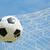 voetbal · doel · sport · voetbal · veld · groene - stockfoto © hin255