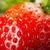 Strawberries berry isolated  stock photo © hin255
