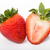 Strawberries berry isolated  stock photo © hin255