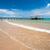 острове · воды · природы · морем · Palm · синий - Сток-фото © hinnamsaisuy