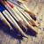 paint brushes stock photo © hitdelight