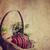 gyönyörű · mintázott · húsvéti · tojások · színes · fészek · terv - stock fotó © hitdelight