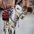 donkey stock photo © hitdelight