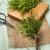 orgânico · alecrim · plantas · macro · raso · jardim - foto stock © homydesign
