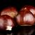 fekete · tükröződő · közelkép · fa · ősz · ajándék - stock fotó © homydesign