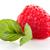 suco · fresco · frutas · branco · comida - foto stock © homydesign