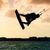 silhueta · voador · acima · água · mar - foto stock © homydesign