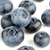 group of fresh blueberries stock photo © homydesign