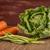 ejotes · mesa · de · cocina · alimentos · grupo · cocina · agricultura - foto stock © homydesign