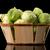 friss · zöldségek · kosár · izolált · fehér · bio · zöldség - stock fotó © homydesign