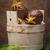 topo · frutas · folhas · ver · comida - foto stock © homydesign