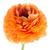 laranja · perene · flor · sol · estrela - foto stock © homydesign