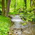 nieuwe · bos · stream · water · hout · bomen - stockfoto © hraska