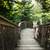 erdő · ösvény · lépcsősor · kopott · fa · út - stock fotó © hraska