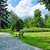 alley with benches in park stock photo © hraska