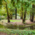formal garden with a small island in the pond stock photo © hraska