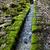 piedra · cubierto · musgo · agua · paisaje · fondo - foto stock © hraska