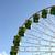 reus · blauwe · hemel · groene · bladeren - stockfoto © hsfelix