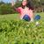 bella · giovane · ragazza · studente · città · parco · estate - foto d'archivio © hsfelix