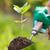 növény · Föld · kicsi · ásó · nő · tart - stock fotó © icefront