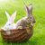 genç · tavşanlar · oturma · beyaz · tavşan · hayvan - stok fotoğraf © icefront